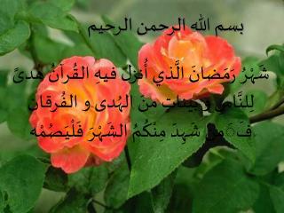 مع أجمل التهاني بقدوم  شهر رمضان المبارك  لعام 1425  أحييكم و أقدم لكم