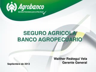 SEGURO AGRICOLA BANCO AGROPECUARIO