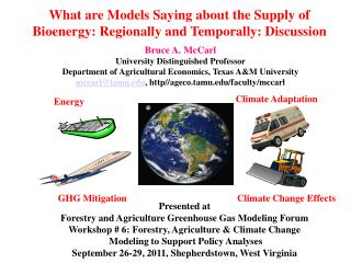 What are Models Saying about the Supply of Bioenergy: Regionally and Temporally: Discussion