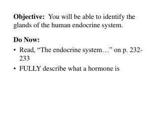 Objective:   You will be able to identify the glands of the human endocrine system.