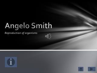 Angelo Smith