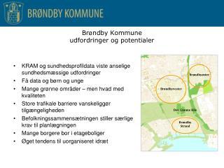 Br ø ndby Kommune  udfordringer og potentialer