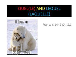 QUEL(LE)  AND LEQUEL (LAQUELLE)