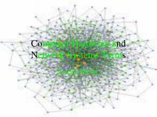 Co mputer Hardware a nd N etwork Systems Term s