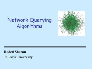 Network Querying Algorithms