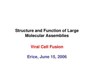 Structure and Function of Large Molecular Assemblies Viral Cell Fusion Erice, June 15, 2006