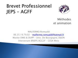 Brevet Professionnel  JEPS – AGFF