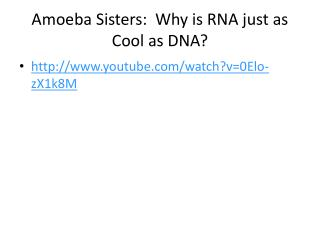 Amoeba Sisters:  Why is RNA just as Cool as DNA?