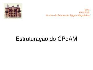 Estruturação do CPqAM
