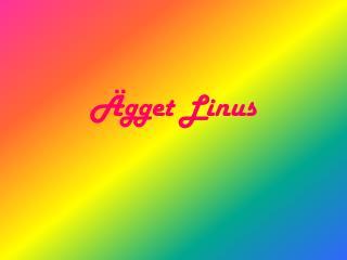 Ägget L inus
