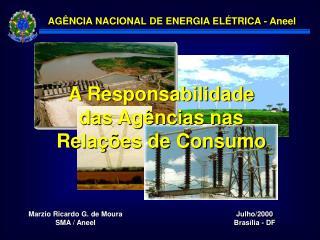 A Responsabilidade das Ag ncias nas Rela  es de Consumo