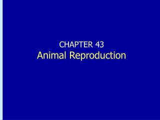 CHAPTER 43 Animal Reproduction