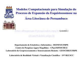 Jones.albuquerque@pesquisadorpq.br  (coord.) silvana@deinfo.ufrpe.br