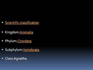Scientific classification Kingdom: Animalia Phylum: Chordata Subphylum: Vertebrata Class:Agnatha