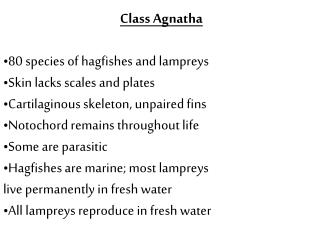 Class Agnatha 80 species of hagfishes and lampreys Skin lacks scales and plates