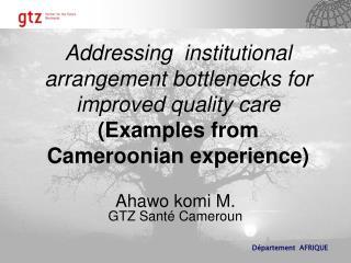 Ahawo komi M. GTZ Santé Cameroun