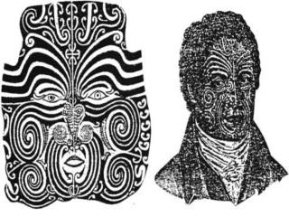 The male facial tattoo - Moko - is generally divided into eight sections :