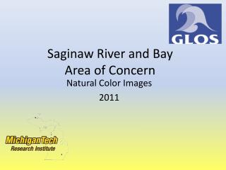 Saginaw River and  Bay Area of Concern