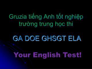 GA DOE GHSGT ELA