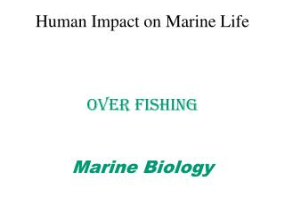 Human Impact on Marine Life Over Fishing Marine Biology