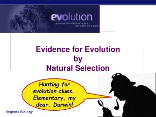 Evidence for Evolution by  Natural Selection