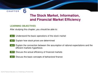 The Stock Market, Information, and Financial Market Efficiency