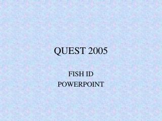 QUEST 2005