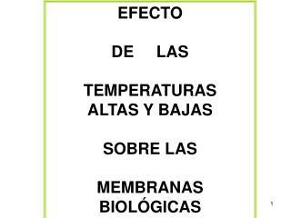 EFECTO  DE     LAS  TEMPERATURAS  ALTAS Y BAJAS  SOBRE LAS  MEMBRANAS BIOLÓGICAS