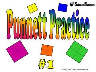 Punnett Practice