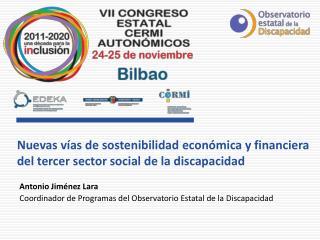 Nuevas v�as de sostenibilidad econ�mica y financiera del tercer sector social de la discapacidad