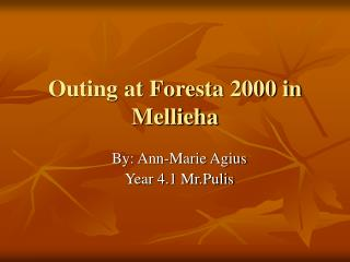 Outing at Foresta 2000 in  Mellieha