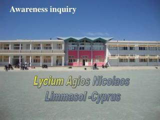 Awareness inquiry