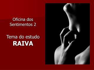 Oficina dos Sentimentos 2 Tema do estudo  RAIVA