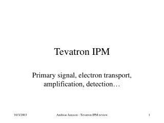 Tevatron IPM