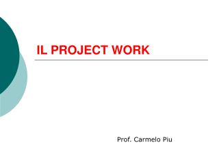 IL PROJECT WORK