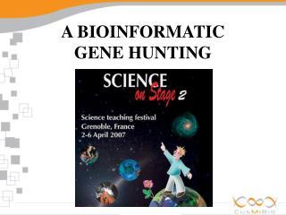 A BIOINFORMATIC GENE HUNTING