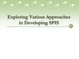 Exploring Various Approaches in Developing SPIS