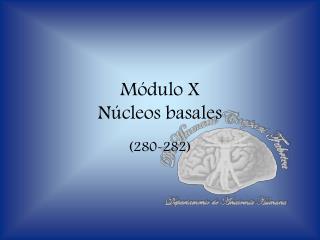 Módulo X Núcleos basales