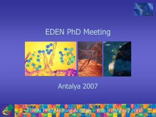 EDEN PhD Meeting