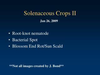 Solenaceous Crops II