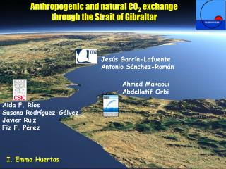 Anthropogenic and natural CO 2  exchange  through the Strait of Gibraltar