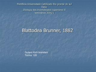 Blattodea Brunner, 1882