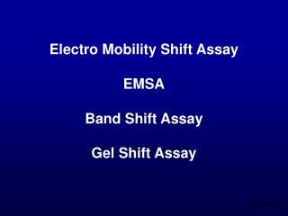 Electro Mobility Shift Assay EMSA Band Shift Assay Gel Shift Assay