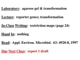 Laboratory :  agarose gel & transformation Lecture :  reporter genes; transformation