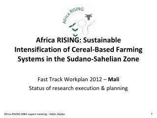 Fast Track Workplan 2012 �  Mali Status of research execution & planning