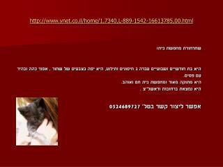 ynet.co.il/home/1,7340,L-889-1542-16613785,00.html