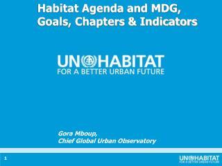 Habitat Agenda and MDG, Goals, Chapters & Indicators