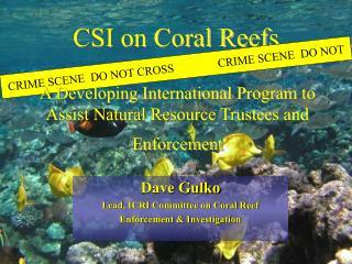 CSI on Coral Reefs