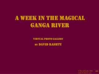 A Week in the Magical Ganga River