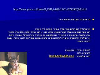 ynet.co.il/home/1,7340,L-889-1542-16723987,00.html